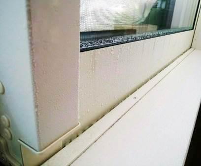 今日の小掃除 ー 窓の結露 ー